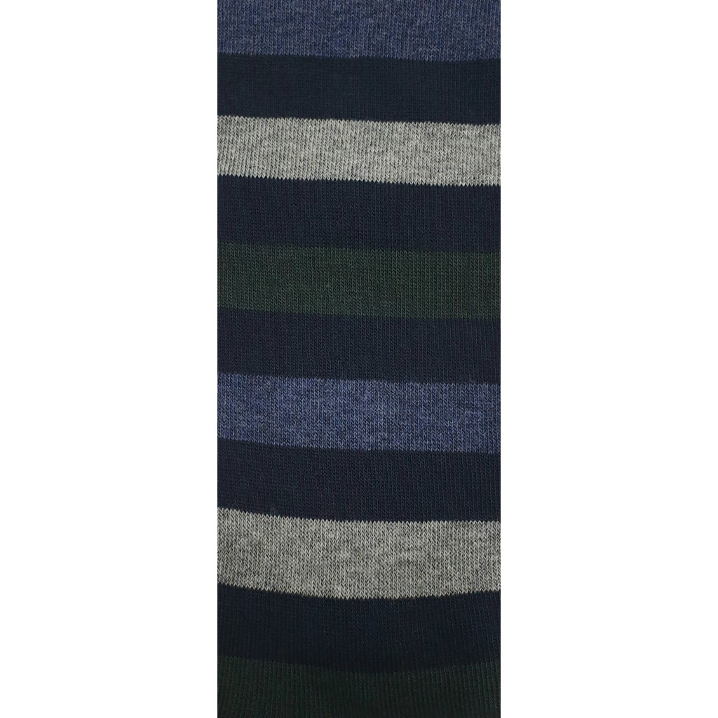ART. RIGA BLU MULTICOLOR  - Men's sock  long in warm cotton